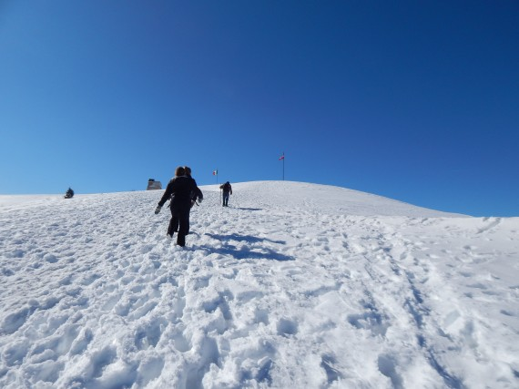 The top of Mt. Grappa