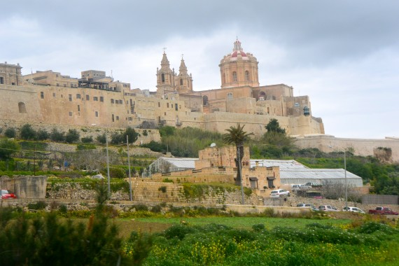 view of Mdina, the walled city