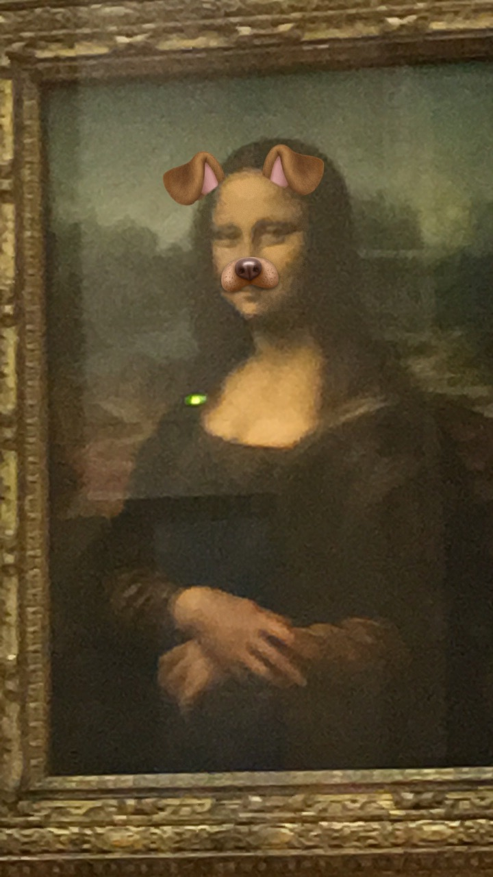 Honorable mention goes to Snapchat for allowing me to do this to the real Mona Lisa in Paris