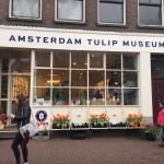 While in Amsterdam, my love of flowers drew me into the Tulip Museum where I got to see tons of different types of flowers! It smelled absolutely amazing in there!